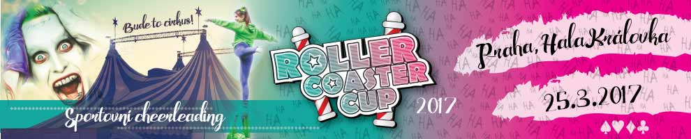 ROLLER COASTER CUP 2017